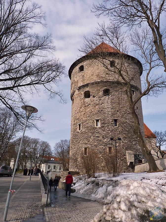 En las murallas de Tallin
