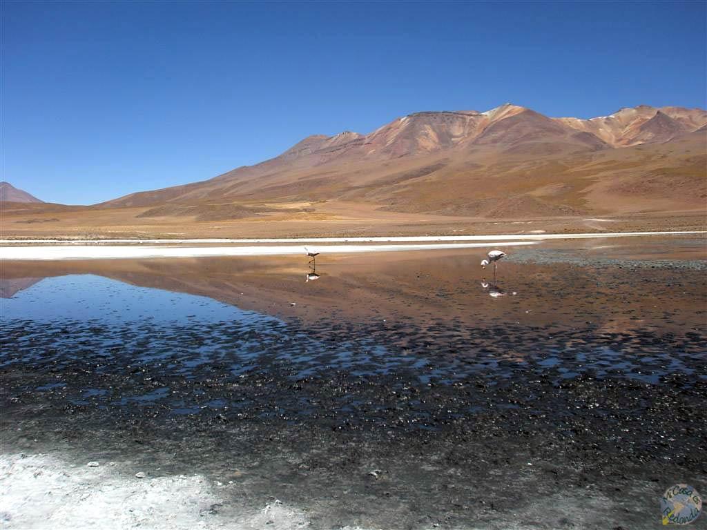 Lagunas del Salar
