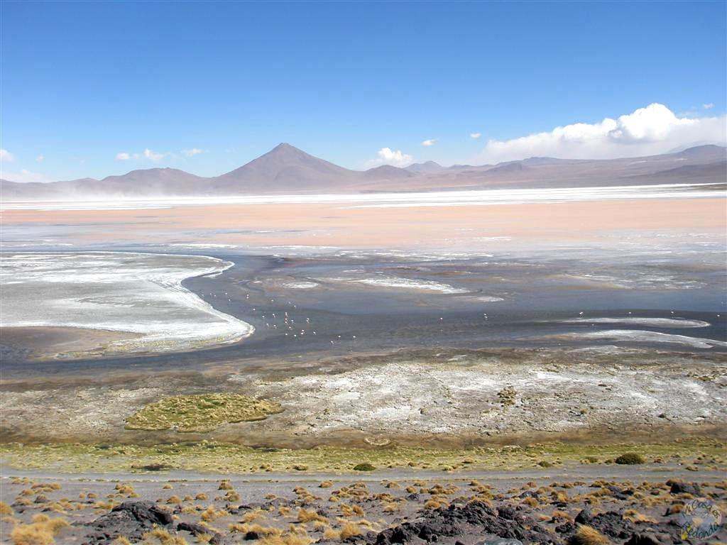 Laguna Colorada, Uyuni