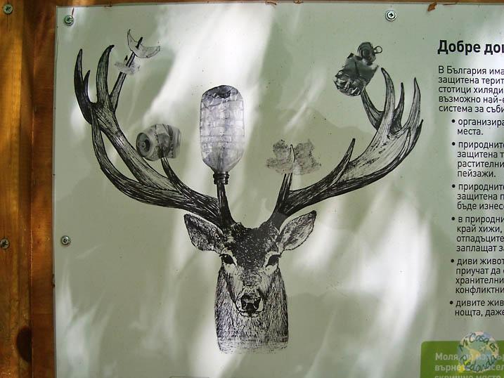 El ciervo reciclador
