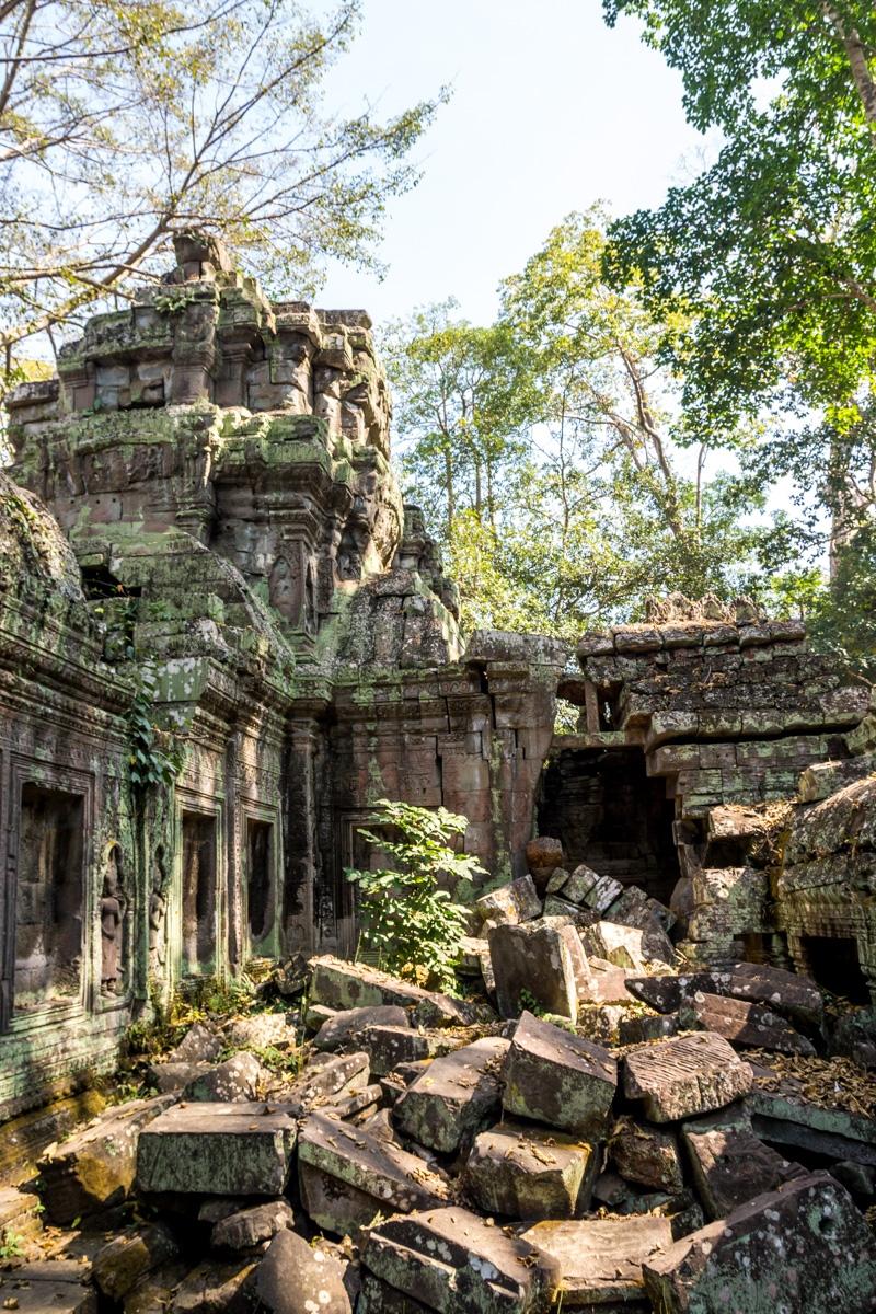 Ruinas y selva, Angkor