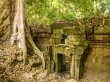 Vegetación mimetizada con las ruinas, Angkor