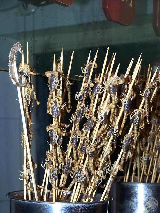 Ricos escorpiones (mentira, no sabían más que a fritanga)