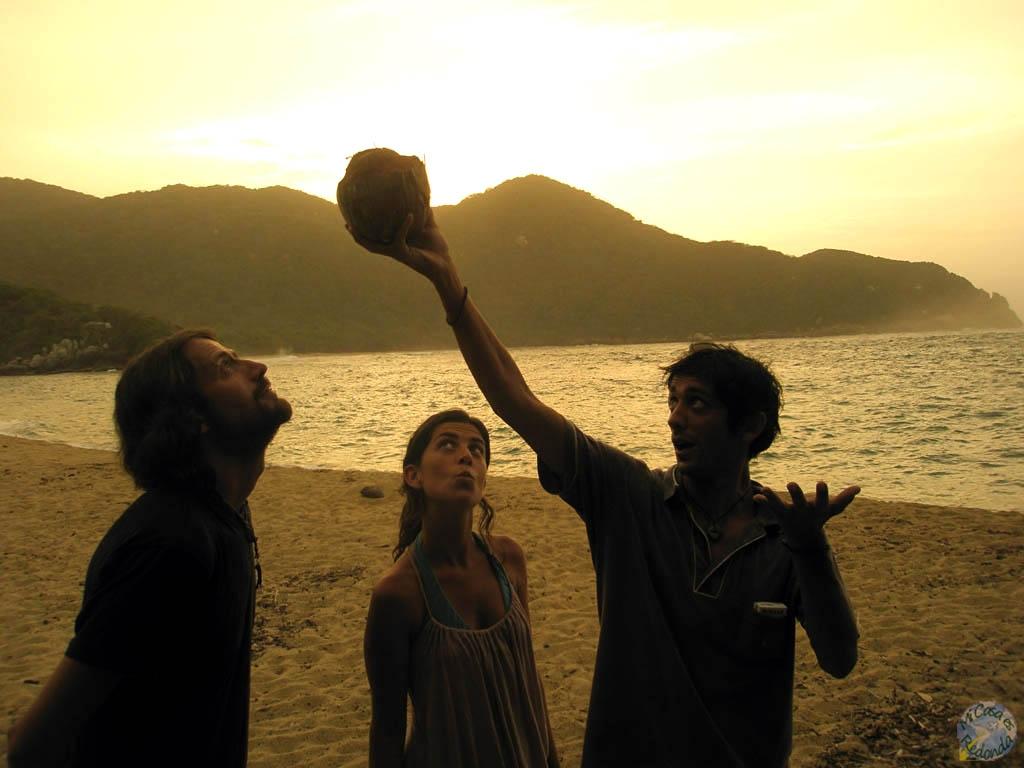 Encontramos la inspiración en un coco