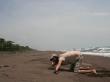La única tortuga que vimos en Tortuguero