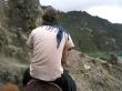 Subiendo en mula