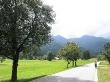Verdes paisajes entre Bled y Bohinj