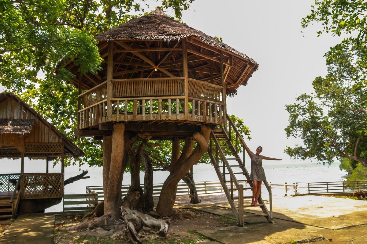 La casita en el árbol