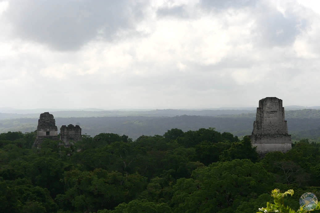 Tikal, o Endor en Star Wars