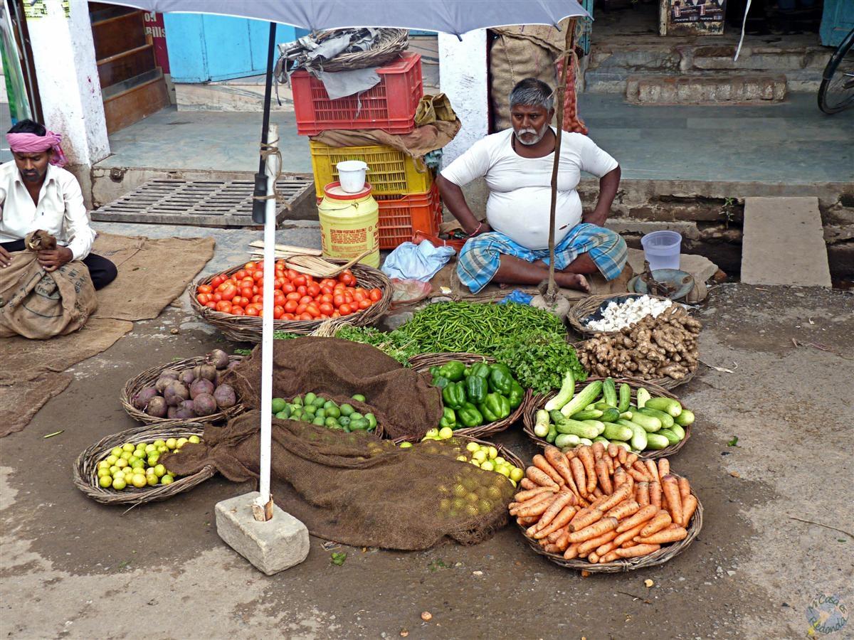 Coloridas verduras
