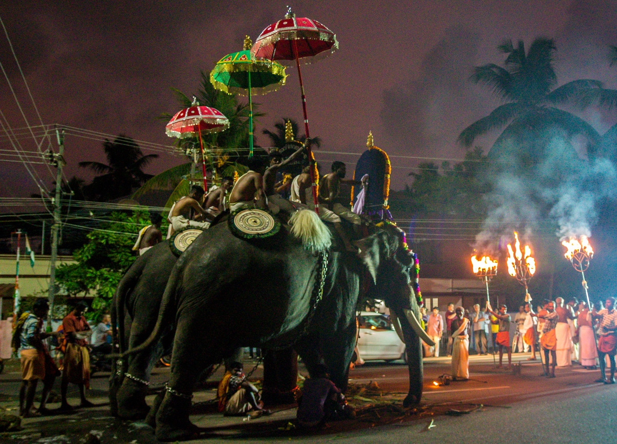 Celebración con megaelefantes en las calles de Kochi