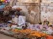 Vendedores callejeros, Pushkar