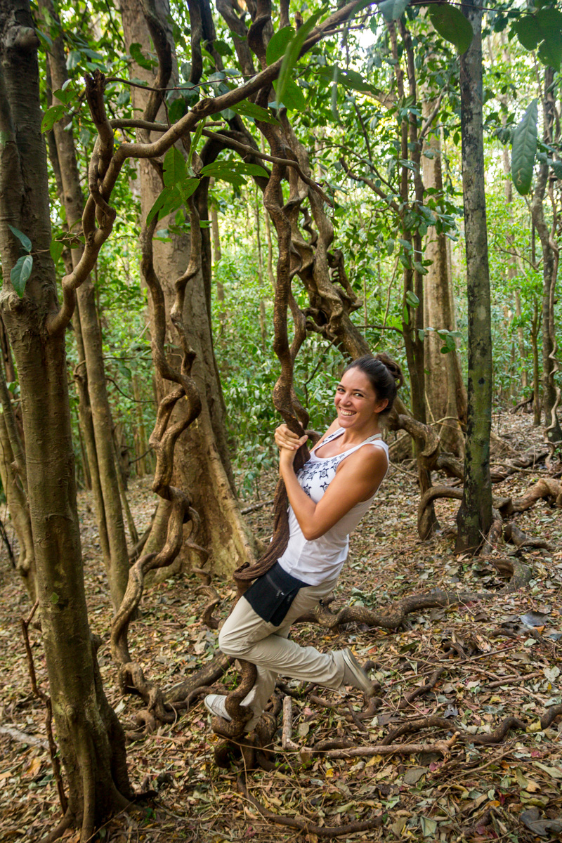 Tarzana en el parque de Tangkoko, Sulawesi