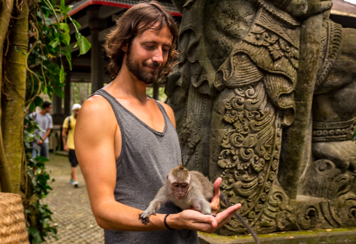 Mírale qué mono! Monkey Forest, Ubud, Bali