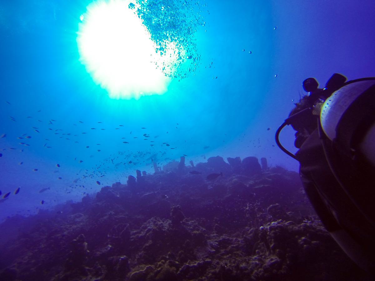 Diving en Una-Una (cortesía de Juan)