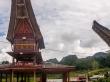 Con la moto por Tana Toraja