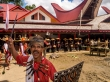 Cantos y danzas, funeral Tana Toraja