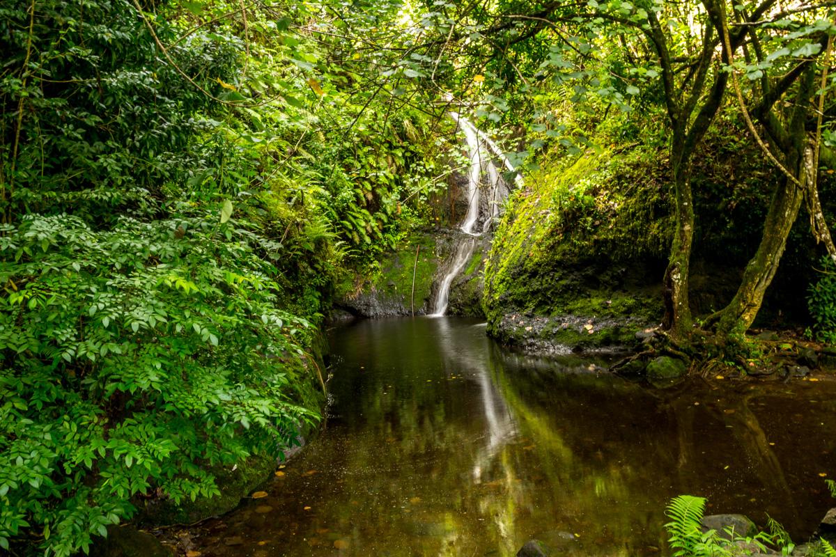 Cascada de Wigmore, en el interior de Rarotonga, islas Cook