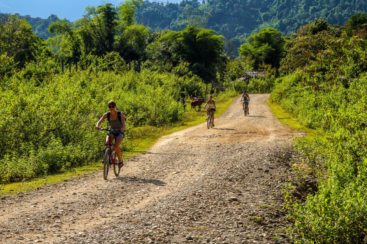 Con las bicis bajo el sol