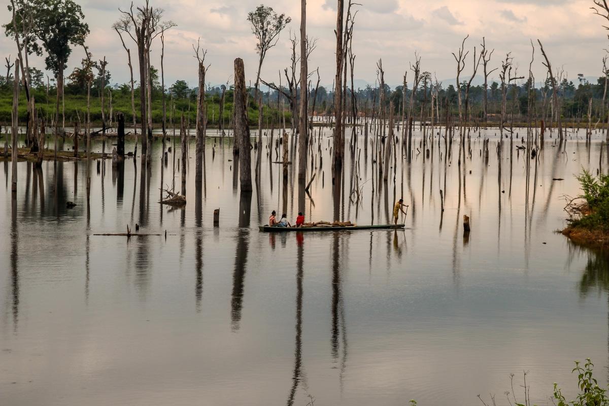 Barca entre los troncos muertos, Thakhek Loop