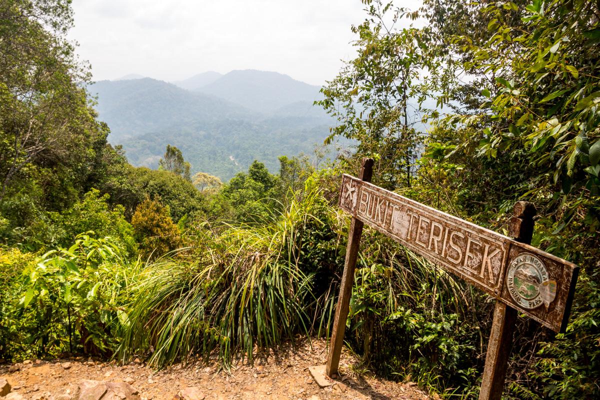 La cima de la colina Bukit Terisek, Taman Negara