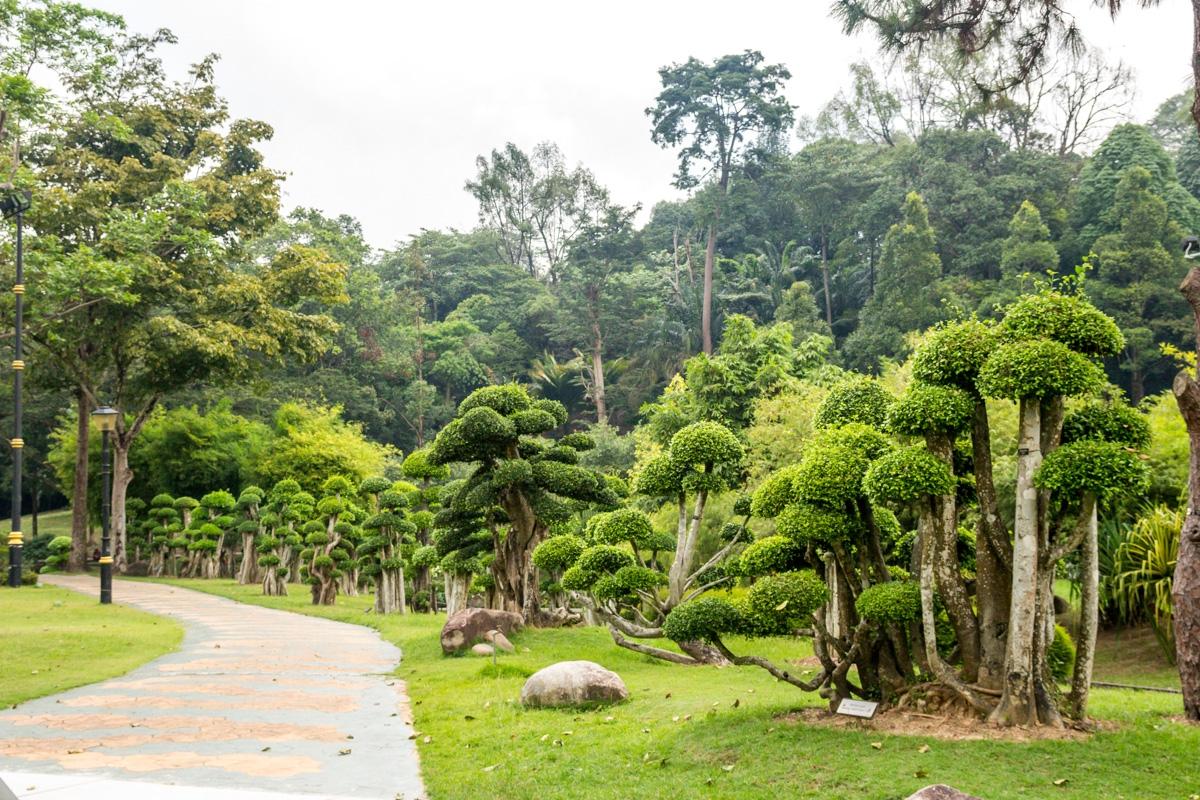 Árboles setas, Kuala Lumpur