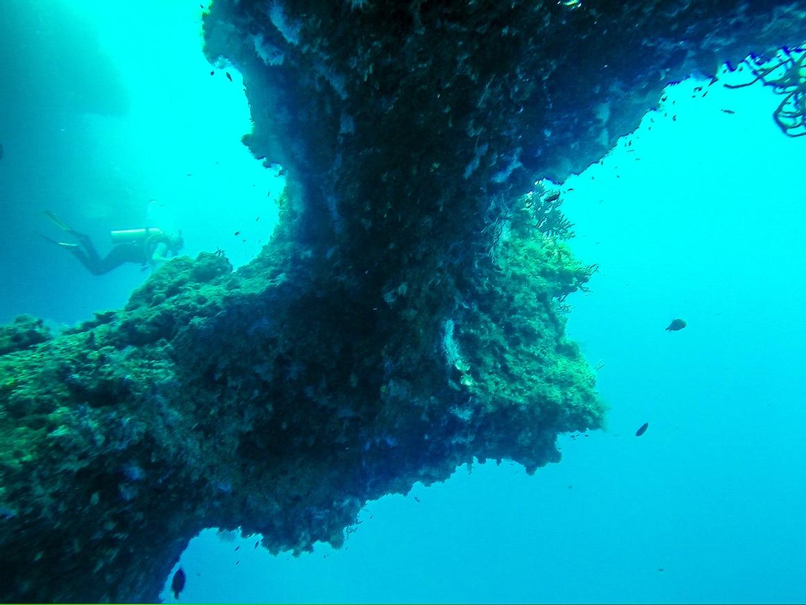 Formaciones submarinas. Maldivas