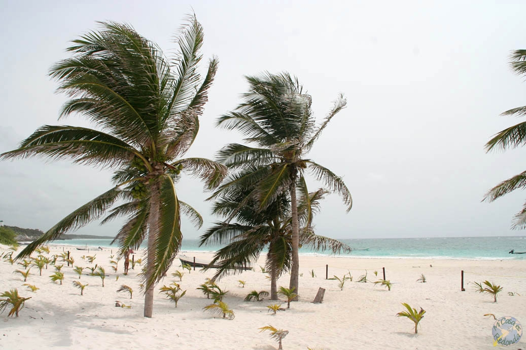 Playas cercanas a Tulum