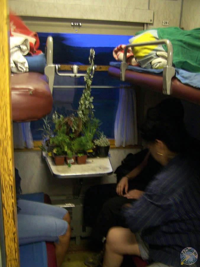 En el transmongoliano, con la casa a cuestas