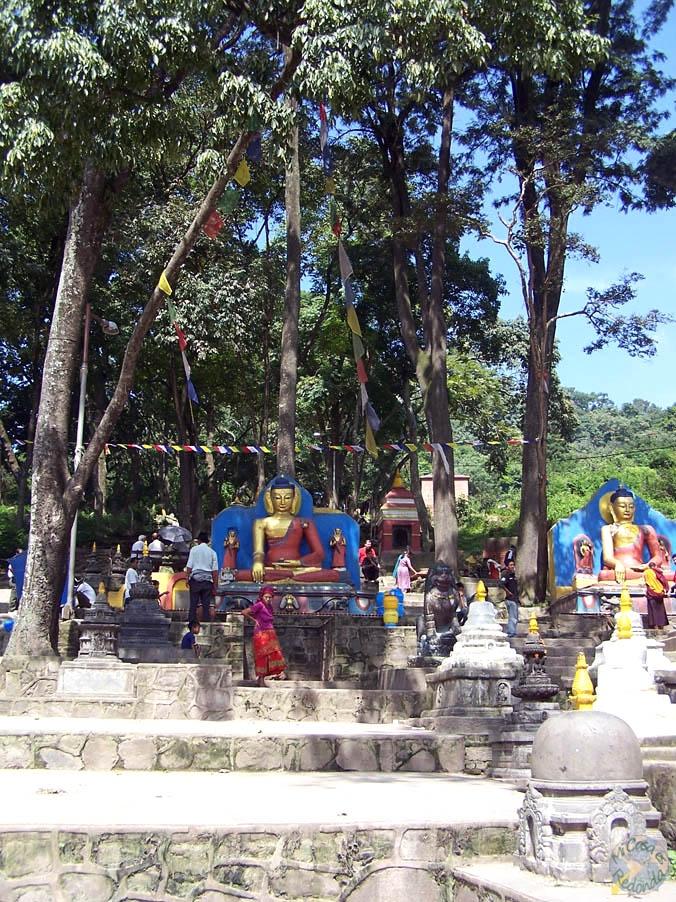 Subiendo al templo de los monos