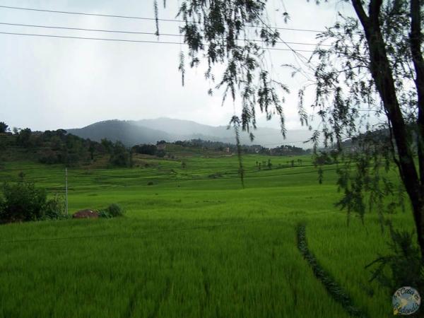 Campiña Nepalí