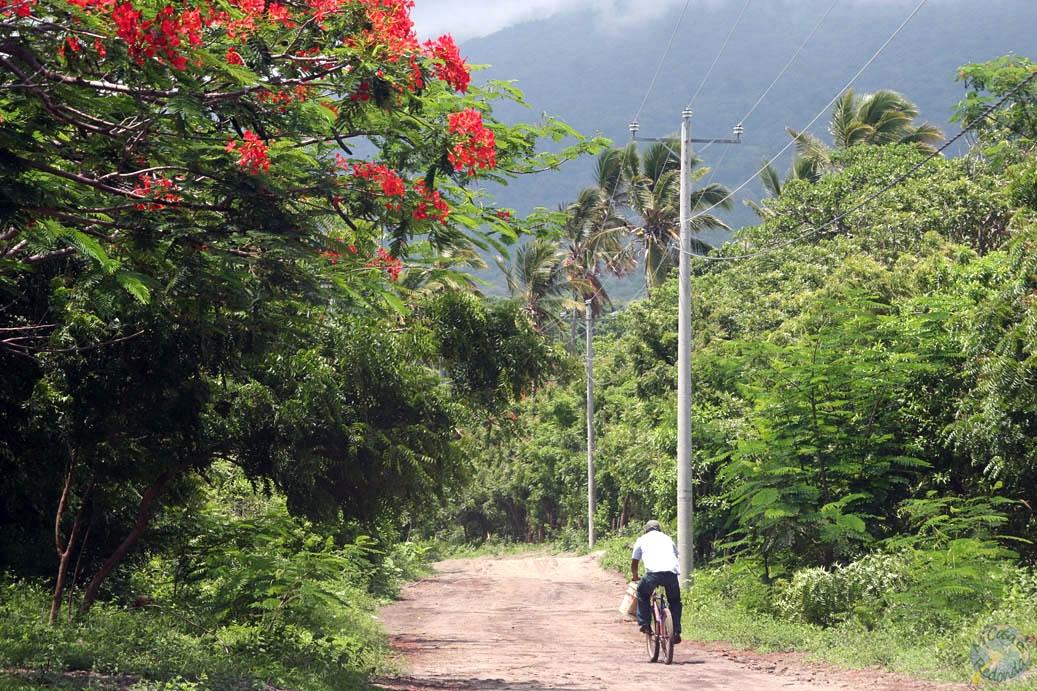 Caminos de Ometepe