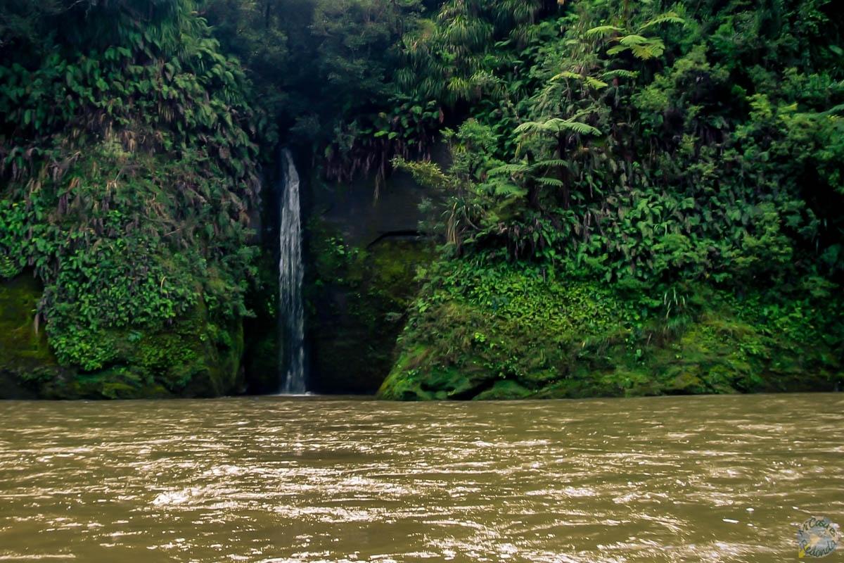 Docenas de cascadas entre el recorrido, Whanganui Journey