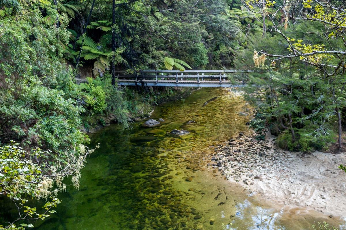 Puentes y ríos en Abel Tasman