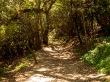 Paseando por el Monte Victoria, Wellington