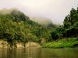 Increíble la mañana con la niebla, Whanganui Journey