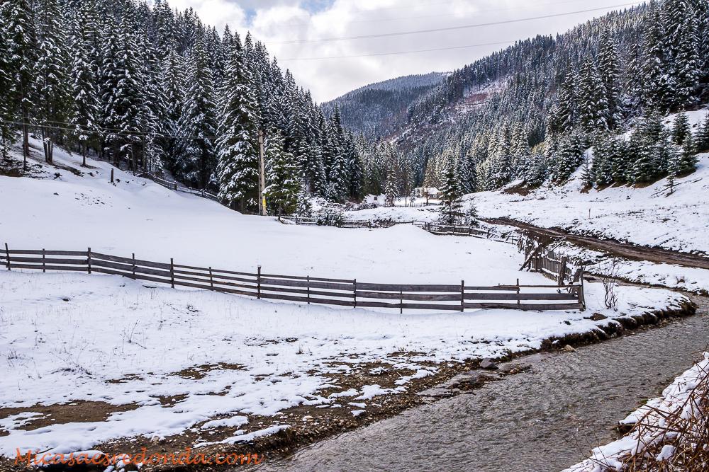 Paisajes nevados en Rumanía, Lacu Rosu