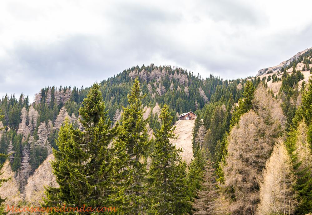 Los verdes montes de alrededor de Sinaia