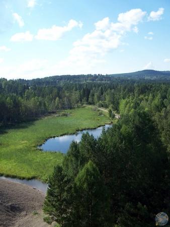 Paisajes de bosques rusos