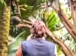 Fotografiando el famoso Coco de Mer, Seychelles