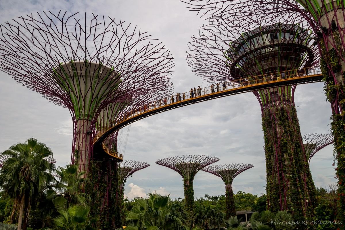 Pasarelas entre árboles artificiales