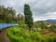 Tren entre montes y montañas