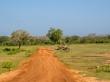 Los caminos que recorres con el jeep, Yala