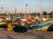 Puerto de Mirissa