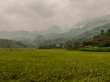Campos de cultivo con paisajes increibles - Loop QL34 road