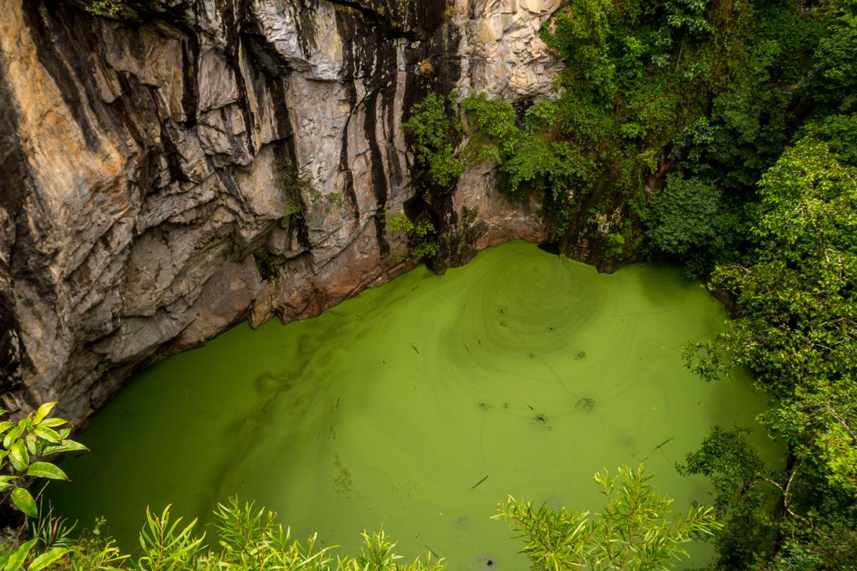 Qué color más apetecible! Atherton Tablelands, Cairns