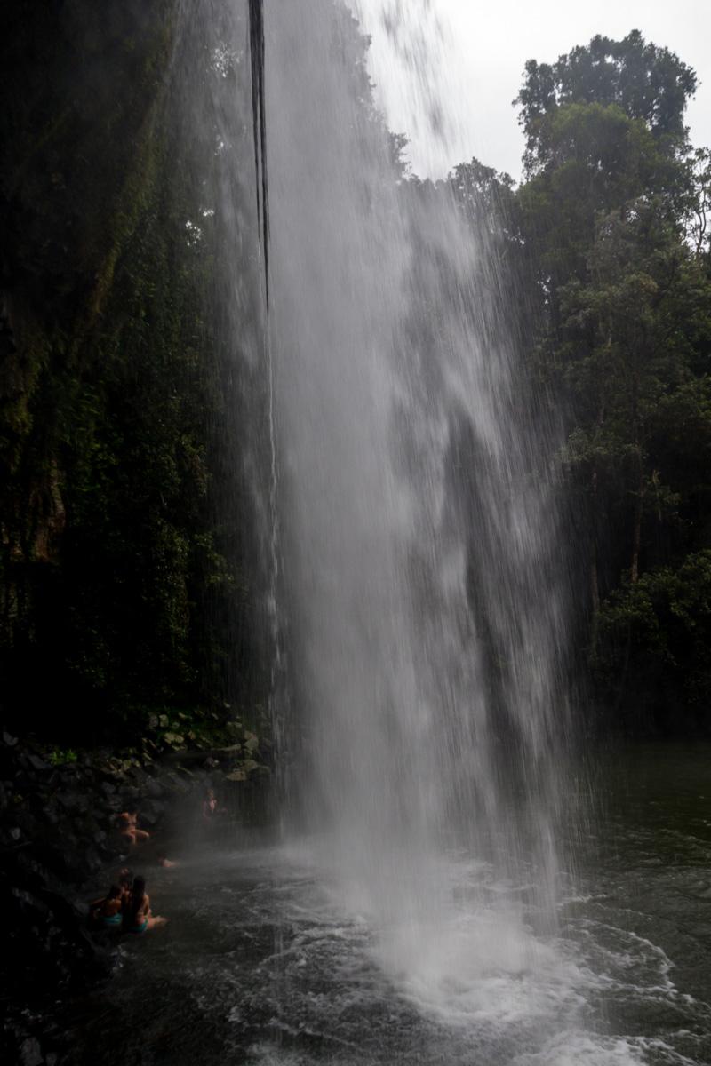 Por detrás de las Milla Milla Falls, Atherton Tablelands, Cairns