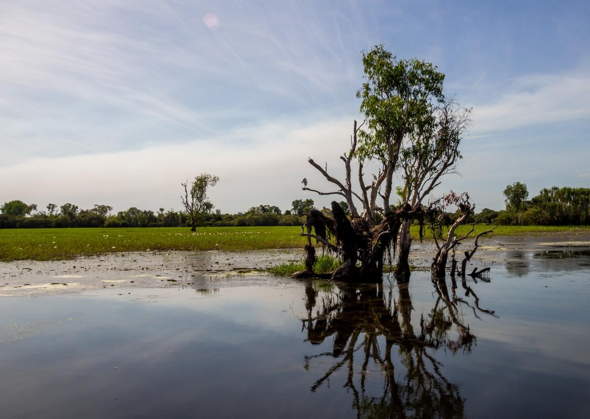 Paisajes en Kakadu National Park