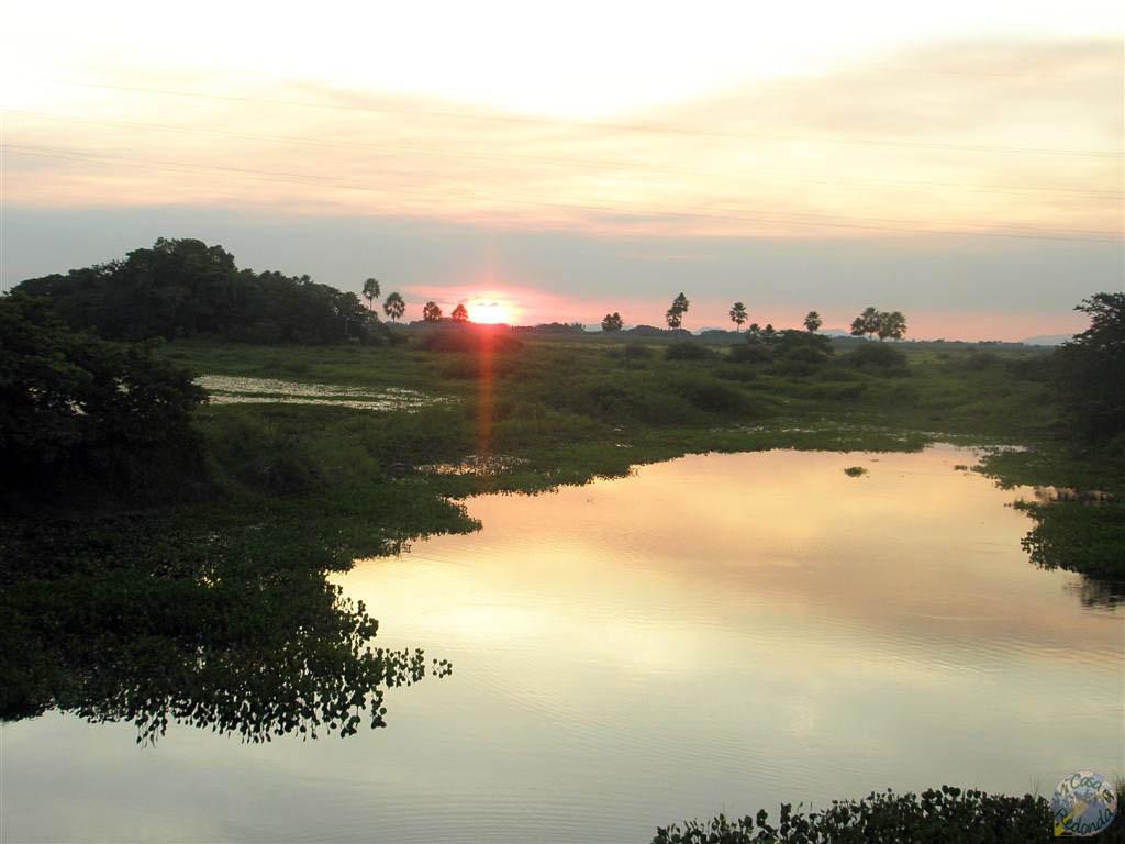 Atardecer en el Pantanal