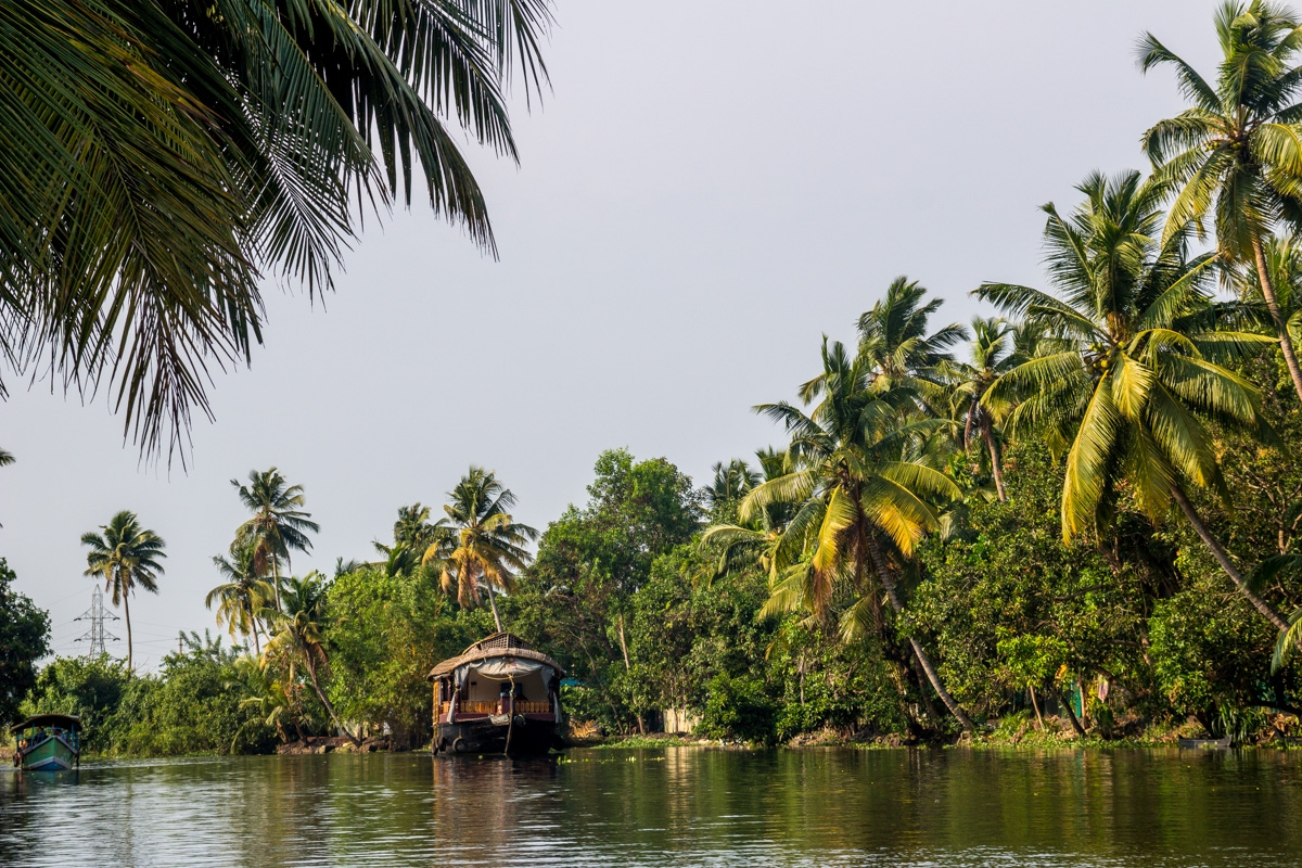 Los backwaters de Alepey
